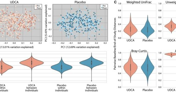 Effects of ursodeoxycholic acid on the gut microbiome and colorectal adenoma development.