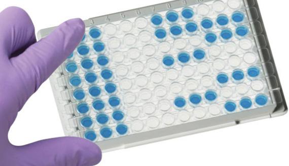 Keys To Select Antibody Pairs